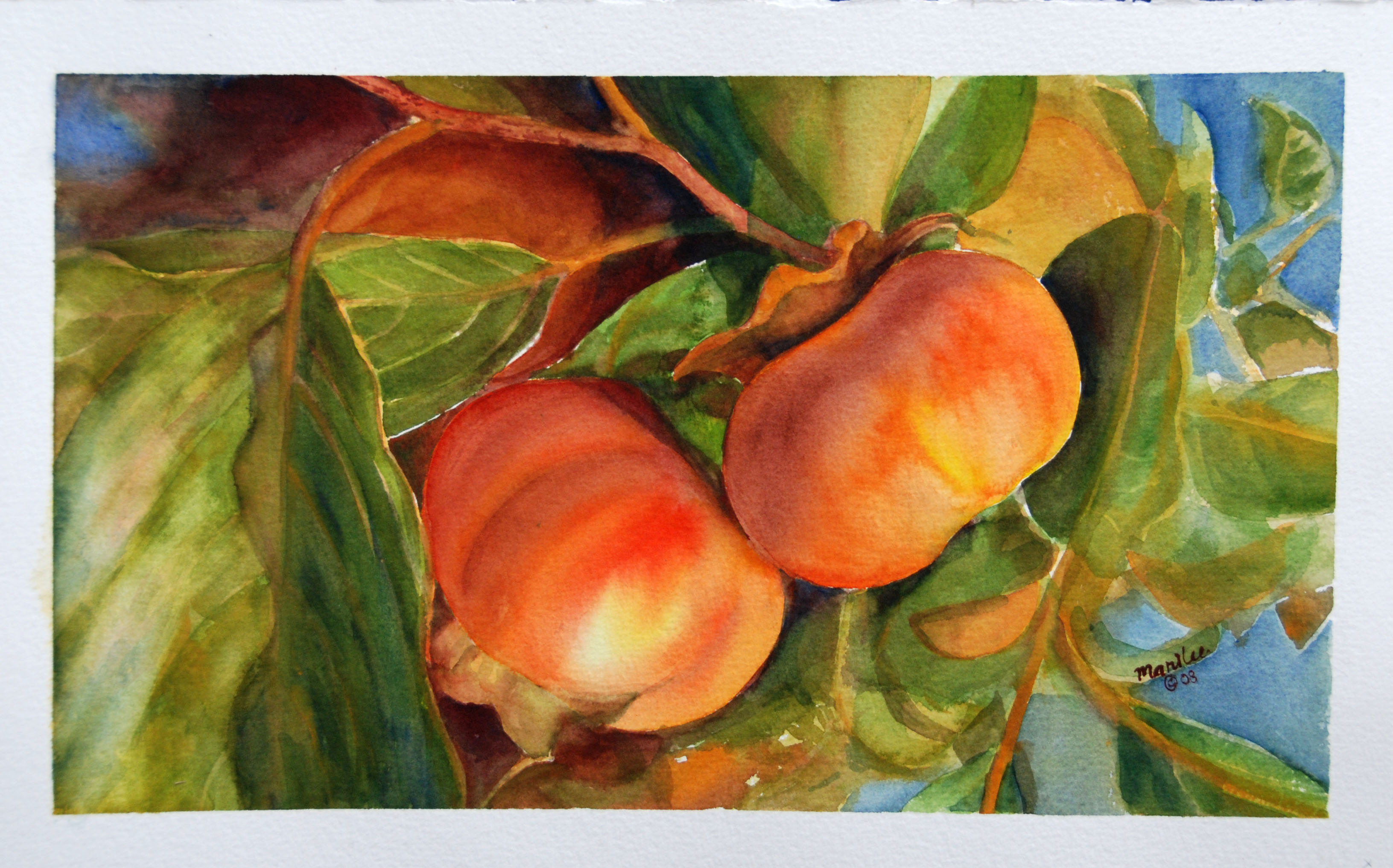 how to begin water colour painting